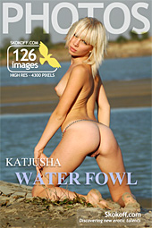 Skokoff gallery - Water Fowl - 126 photos - Katjusha